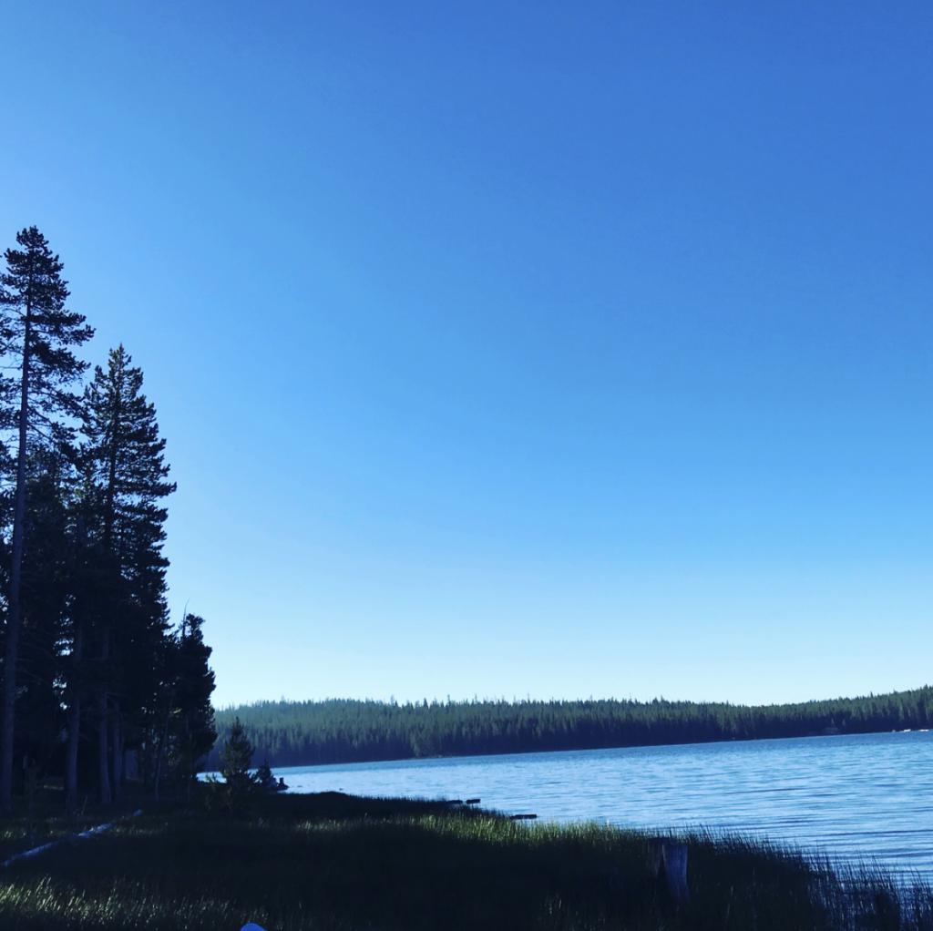 Medicine Lake Shore, Siskiyou