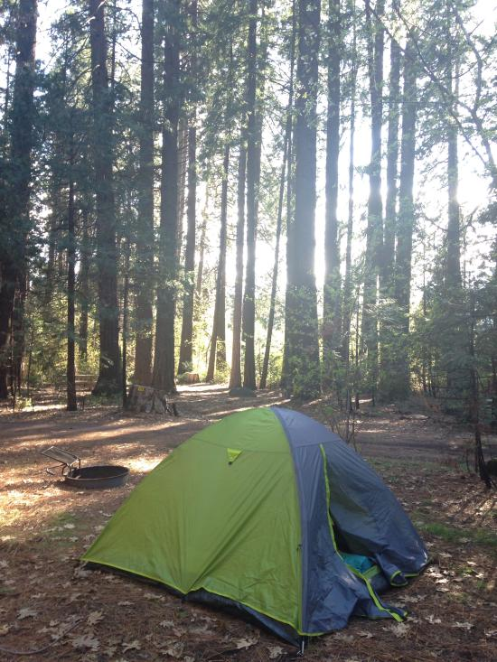 Mt Shasta Ca >> Mt. Shasta KOA & RV Park - Discover Siskiyou