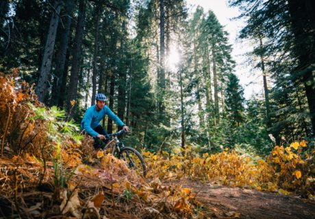Mountain Biking, Mt. Shasta, Siskiyou