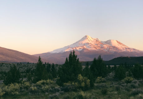 Mount Shasta Vista