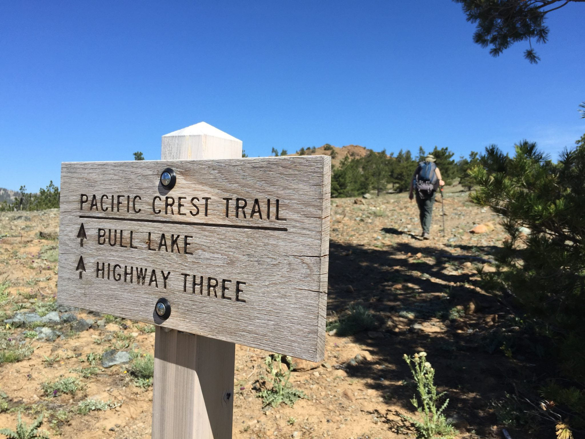 PCT Bull Lake Sign, Cement Bluff, Siskiyou