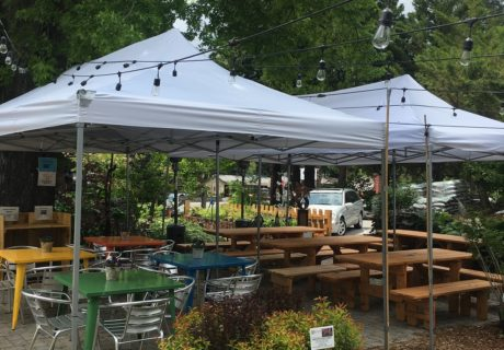 Enjoy Outdoor Dining, The Garden Tap, Mt. Shasta, Siskyou