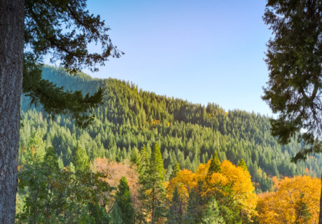 Dunsmuir, Autumn, Fall, Siskiyou