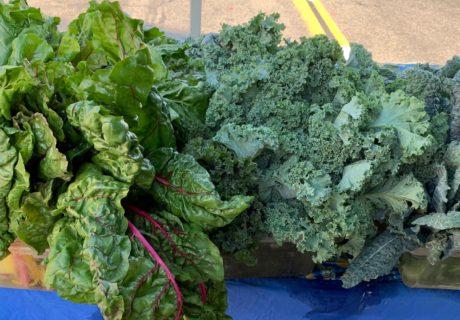 Mt. Shasta Farmer's Market Greens